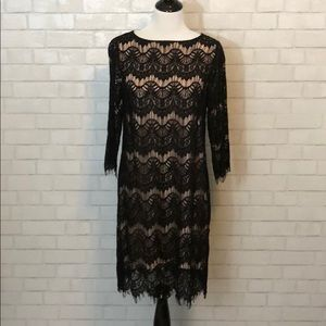 Beautiful Lace Dress from The Limited